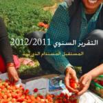 تقرير التنمية البشرية 2011 PDF